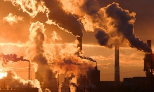 Фото №1 - Экологи обнародовали рейтинг самых грязных районов Петербурга