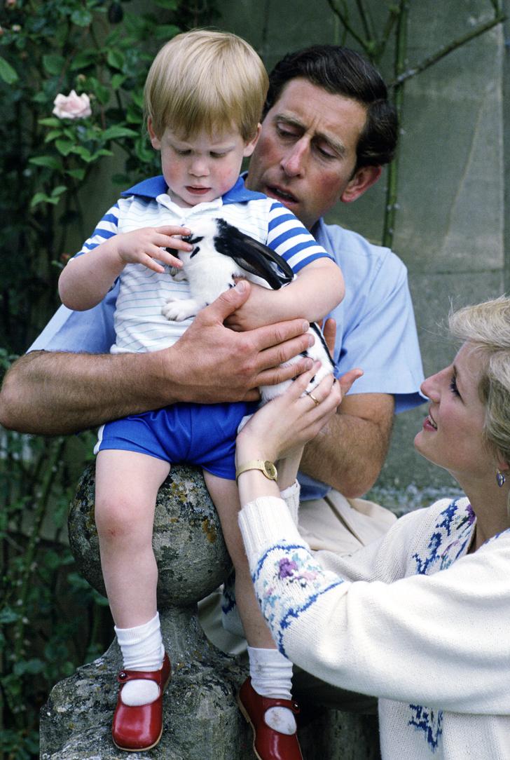 Фото №2 - 26 редких кадров принцессы Дианы с детьми— принцами Гарри и Уильямом