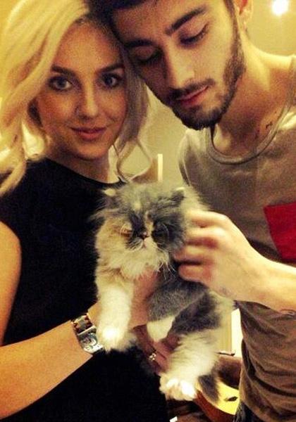 Фото №1 - Умерла кошка, которую Зейн подарил Перри