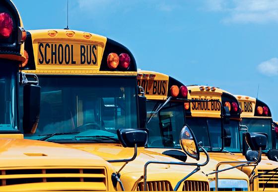 Фото №1 - Как работает система образования в США