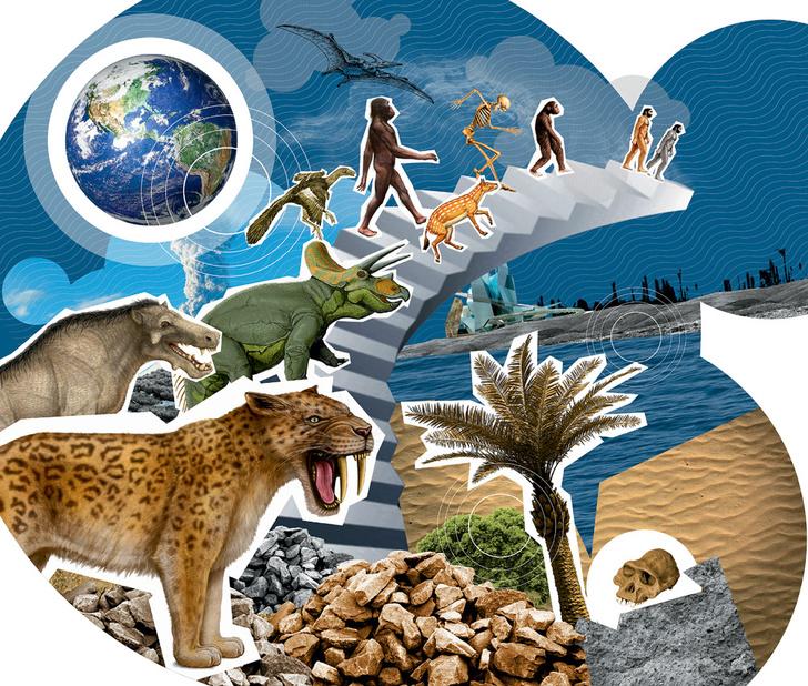 Фото №1 - Шестое великое вымирание