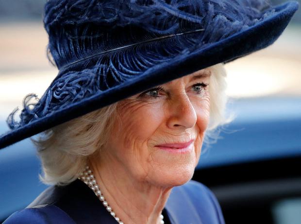 Фото №5 - Кого из королевской семьи считают идеальной женой принца