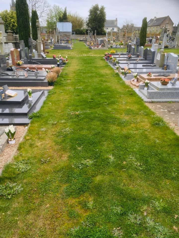 Фото №10 - История французского садовника, который украсил непроданными цветами целое кладбище, стала вирусной (фото)