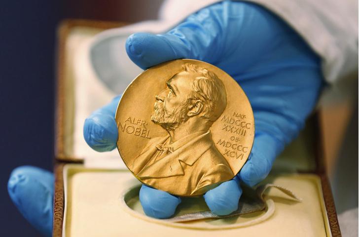 Фото №1 - Нобелевской премии по химии удостоены авторы работ по восстановлению ДНК