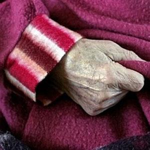 Фото №1 - Новый удар по Альцгеймеру