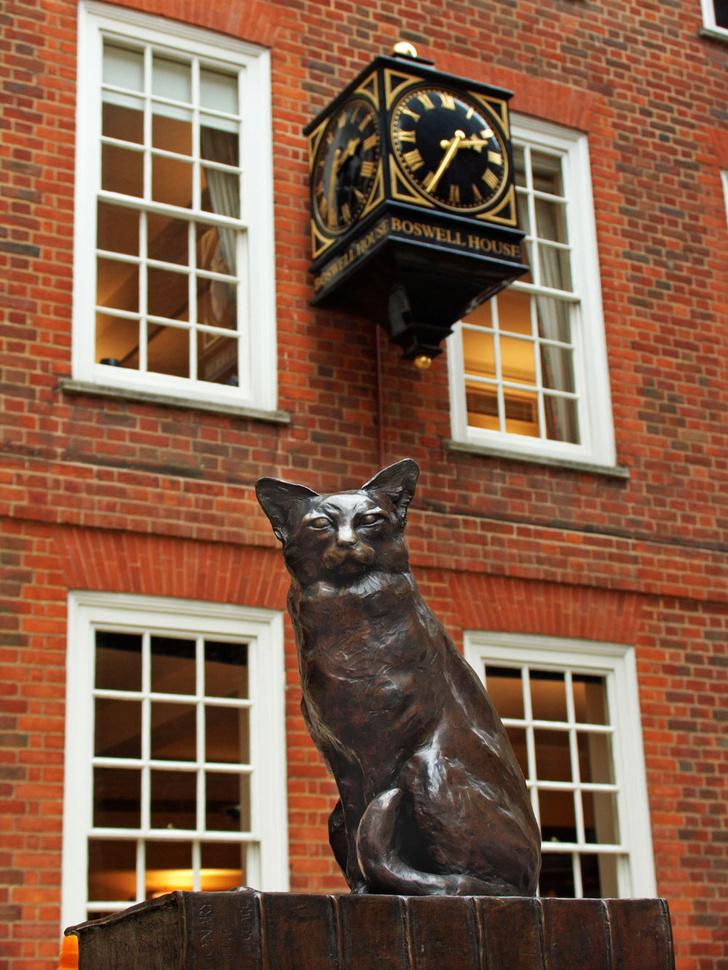 Фото №5 - Короли улиц: 9 памятников кошкам