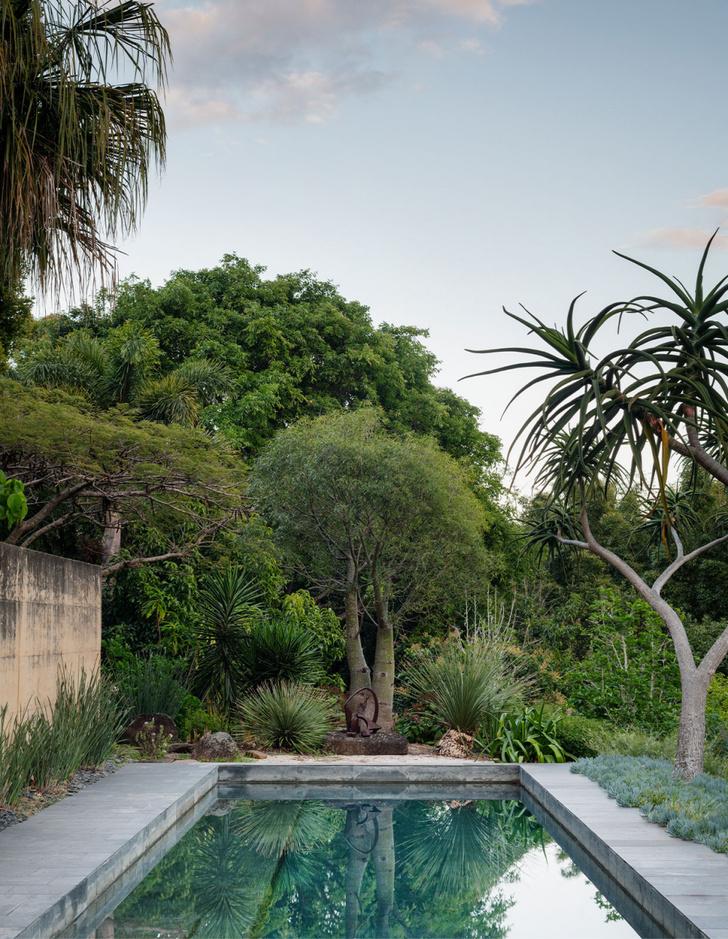 Фото №4 - Тропический сад в Австралии