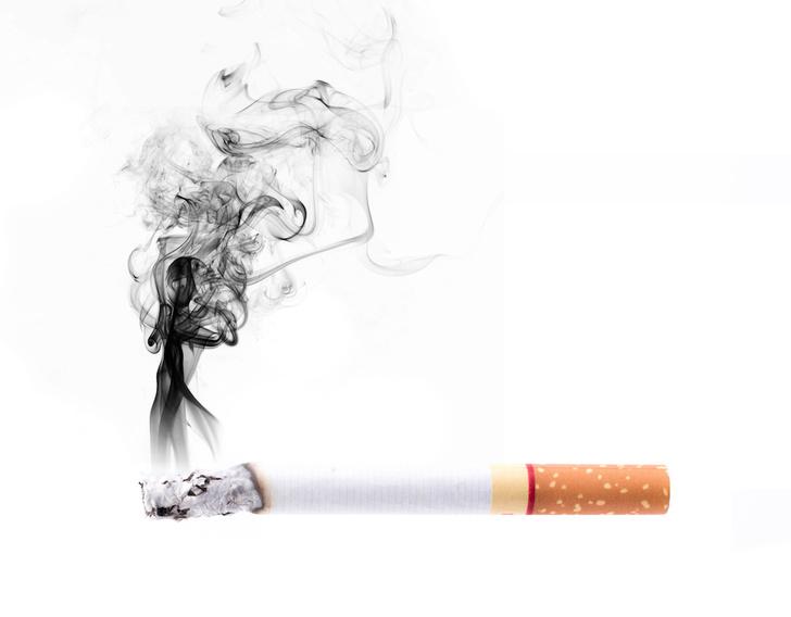 Фото №3 - Вредная привычка: как табачный дым влияет на наш организм