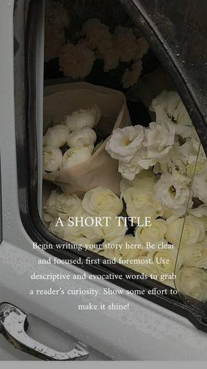 Фото №2 - 5 лучших приложений для красивых сторис в Инстаграм