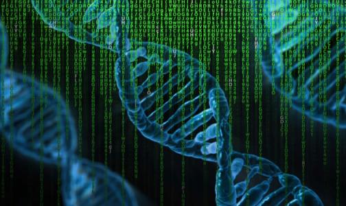 Фото №1 - Путин поручил создать национальную базу генетической информации