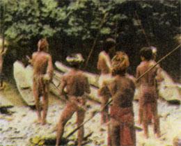 Фото №7 - В лесах Борнео