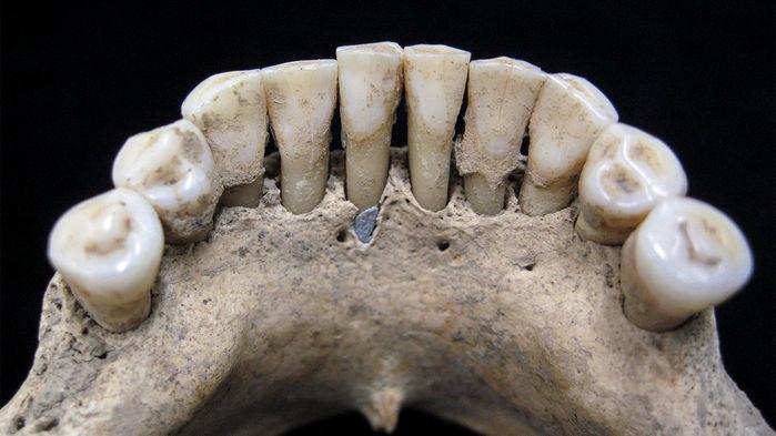 Фото №1 - Ученые выяснили профессию жившей 1000 лет назад женщины