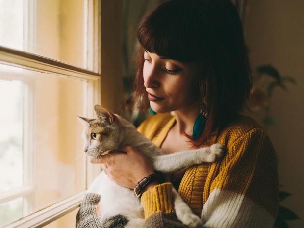 Фото №2 - 14 фактов о кошках, которые на самом деле ложные