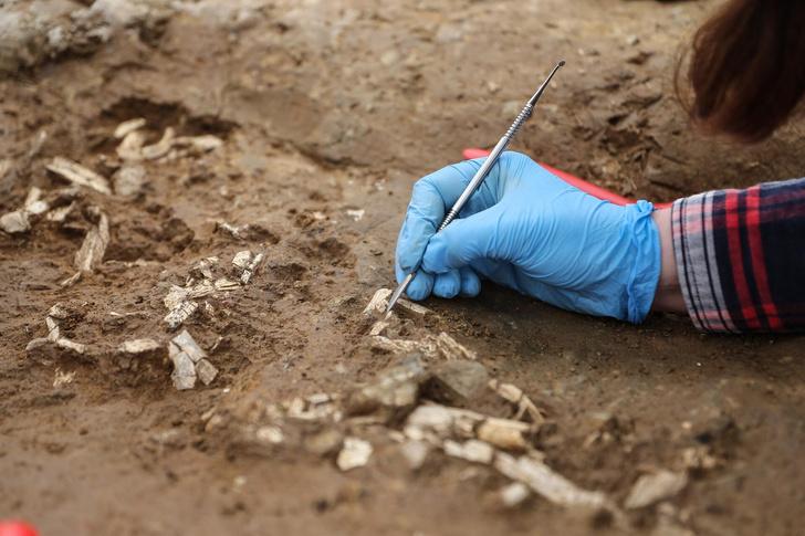 Фото №1 - В Стамбуле обнаружены десятки доисторических гробниц