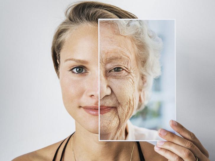 Фото №1 - Тайны долголетия: почему мы все еще стареем, что такое «эффект бабушки» и как узнать свою продолжительность жизни