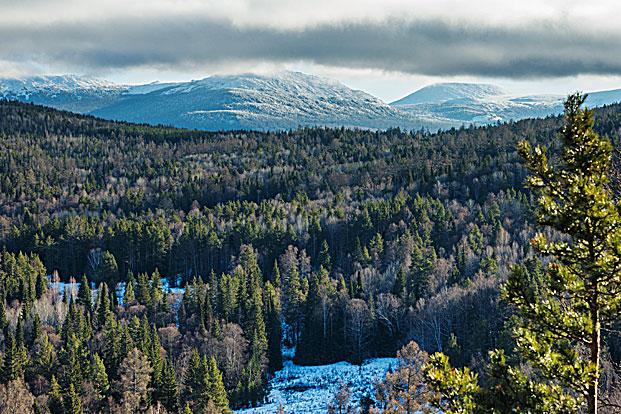 Фото №6 - Каменный пояс: сколько богатств прячут Уральские горы
