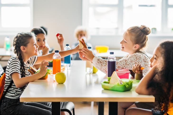 чем кормить школьника: рецепты, список, бесплатное питание в школе кому положено, закон, столько стоит питание в школах