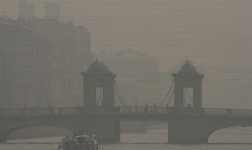 Фото №1 - Сегодня над городом летали частицы сажи и чувствовался запах гари