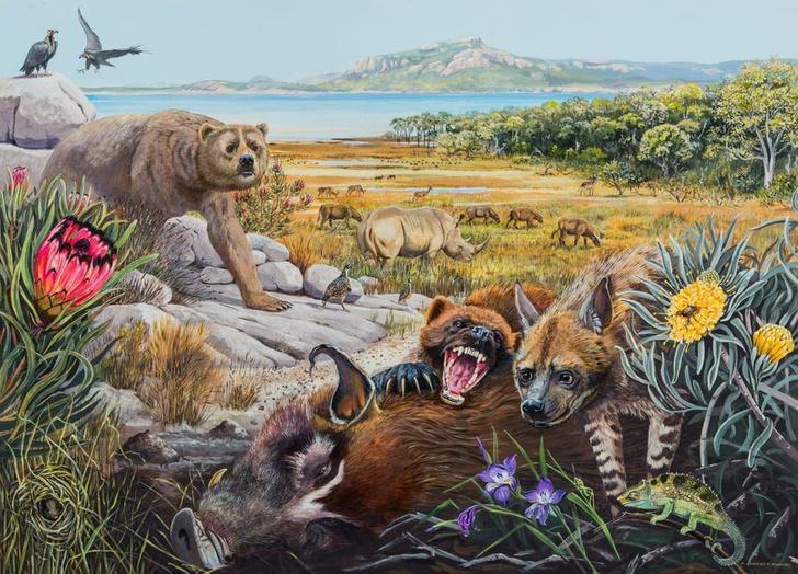 Фото №1 - В Африке обнаружили останки гигантской выдры и росомахи
