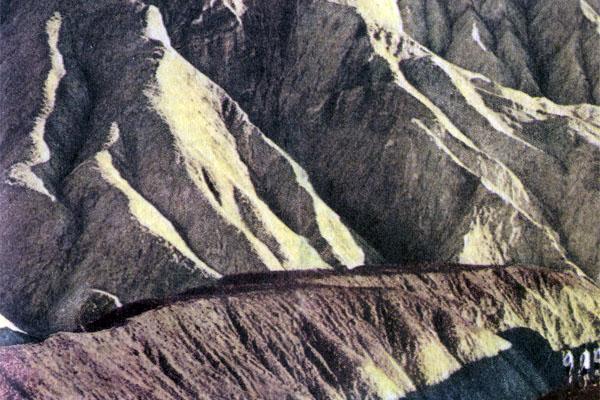 Фото №1 - По дорогам Америки: пустыня