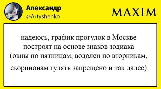 Фото №1 - Лучшие шутки о «прогулочном режиме» в Москве