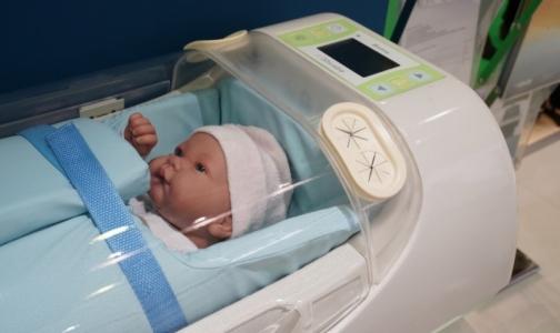 Фото №1 - В России начнут производить переносные инкубаторы для спасения новорожденных