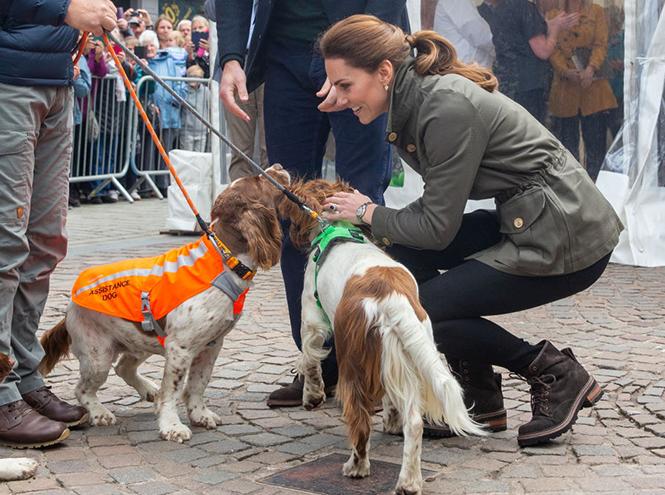 Фото №3 - Герцогиня Кейт освоила новые фермерские навыки