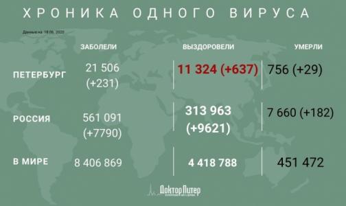 Фото №1 - В Петербурге за сутки выявили 231 новый случай заражения коронавирусом
