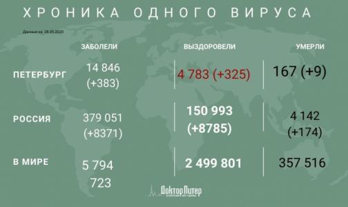 Фото №1 - За сутки коронавирус выявили у 383 петербуржцев