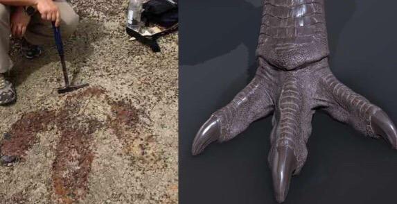 Фото №3 - А ты знаешь, как выглядел настоящий тираннозавр? Спойлер: странно