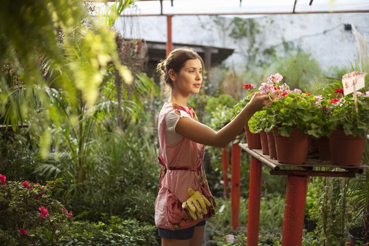 Фото №1 - Гениальность на грани разумного: американка преобразила дачный двор при помощи шторки для ванной (фото)