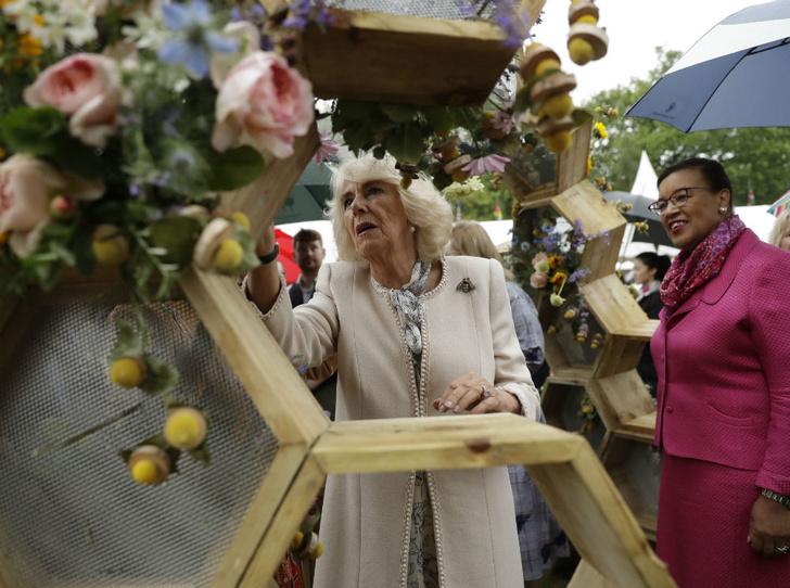 Фото №2 - Неожиданные средства, с помощью которых герцогиня Камилла борется со старением