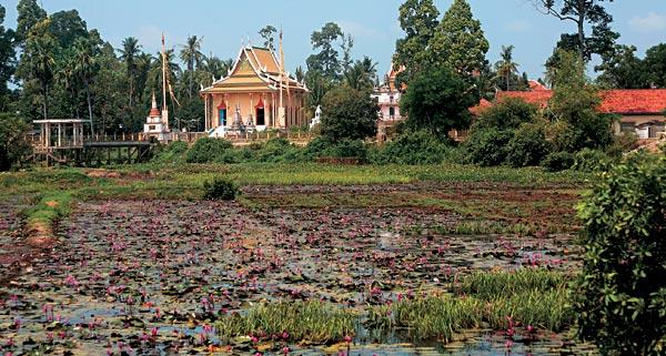 Фото №9 - Возвращение Камбоджи