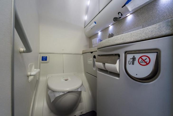 Фото №1 - Альтернативный мозг недели: в TikTok— челендж «лизни сидушку унитаза в самолете»