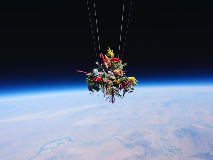 Фото №1 - Букет над Землей