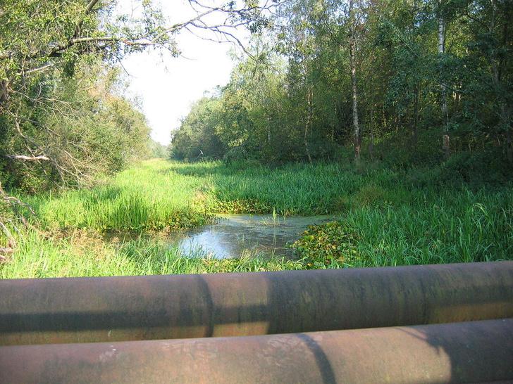Фото №5 - Грандиозная затея Петра: 14 загадок Староладожского канала