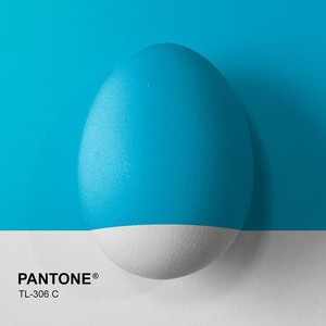 Фото №9 - Как прикольно покрасить яйца на Пасху: 15 креативных идей 🥚 🐇