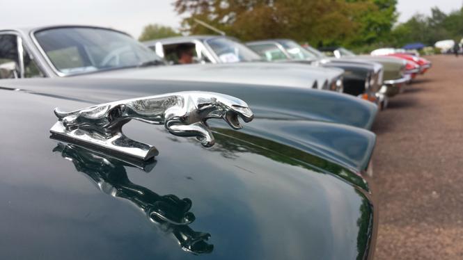 Фото №4 - Автомобили Jaguar на Королевском фестивале в Виндзоре