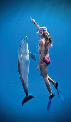 Фото №1 - Страдают ли дельфины от кессонной болезни?