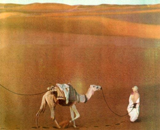 Фото №1 - Сахара: человек и пустыня