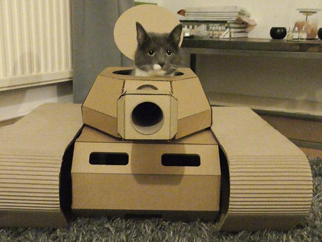 Фото №1 - Коты в картонных танках (21 фотография)