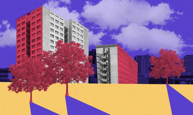 Фото №1 - Деревья в городе: как и для чего озеленяют общественные пространства