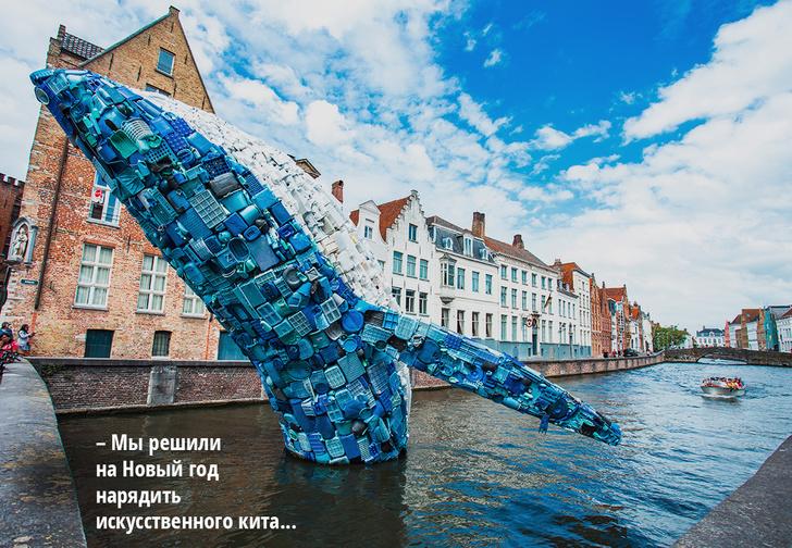 Фото №1 - История одной фотографии: кит в канале Брюгге