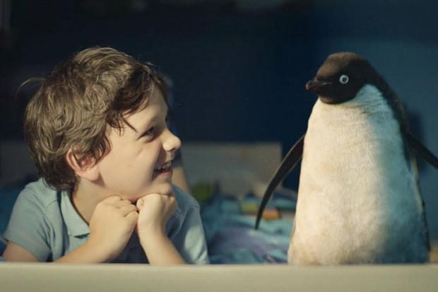 Фото №1 - Как купить плюшевого пингвина и спасти настоящего