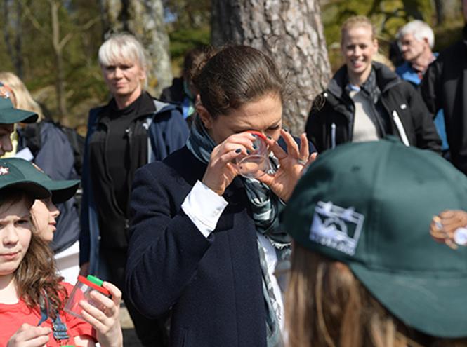 Фото №3 - Шведская кронпринцесса Виктория примерила роль вожатой