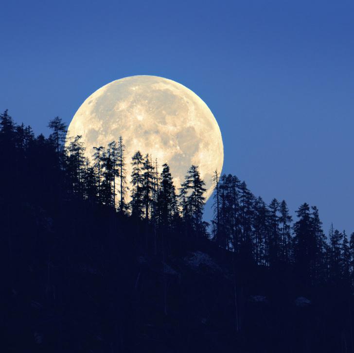 Фото №1 - Видимый цвет Луны — иллюзия