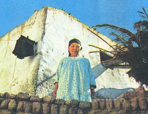 Фото №1 - Сувениры из мезозоя