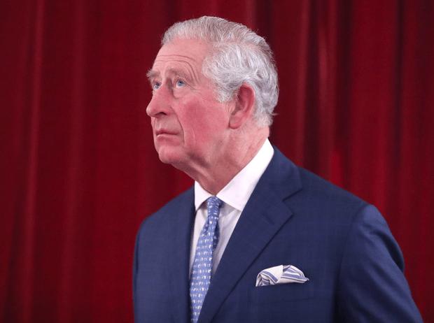 Фото №1 - Большие планы: принц Чарльз хочет превратить Букингемский дворец в «аттракцион»