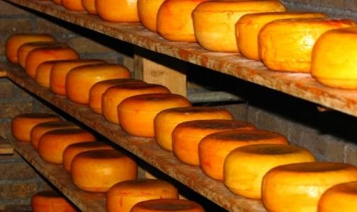Фото №1 - Россия может запретить ввоз украинского сыра