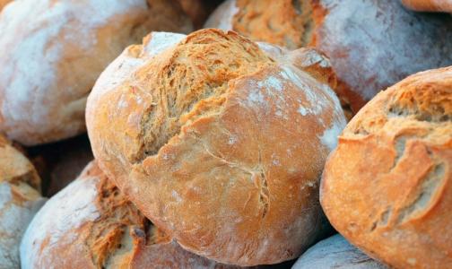 Фото №1 - В Роскачестве рассказали, какой хлеб быстро плесневеет и можно ли его есть